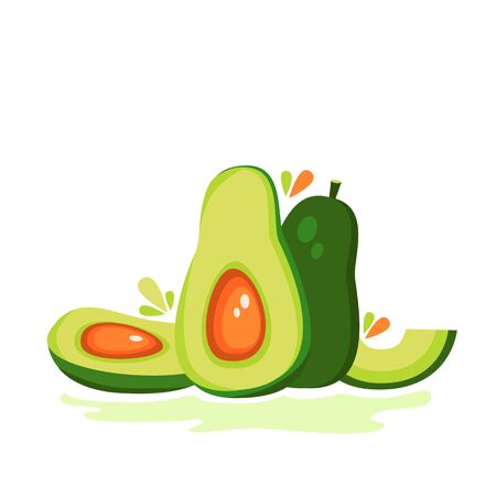 Vector illustration of avocado fruit, avocado slices