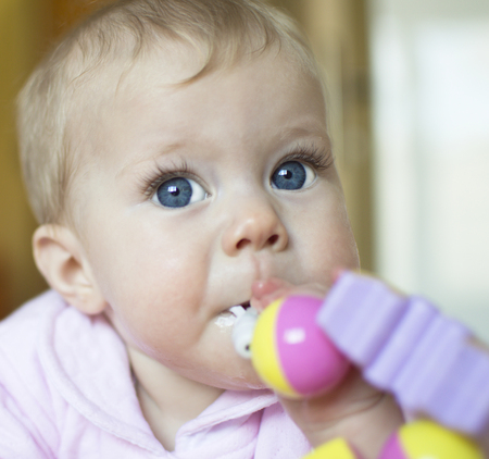 sucks: The baby of half a year sucks a toy