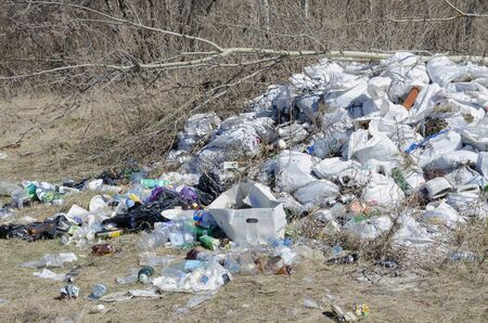 Vladimir region, Sudogodsky district illegal dumping of garbage on the edge of the forest
