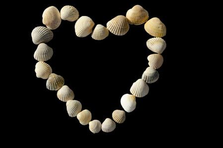 frame heart of seashells isolate on a black background
