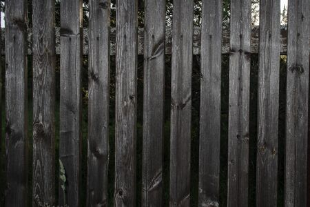 wooden fence in the summer