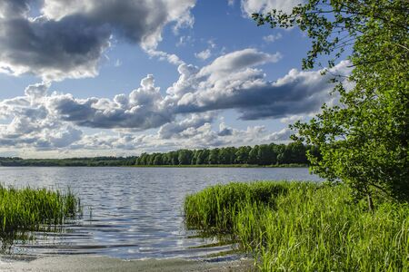 Lake in the forest in the sunlight with beautiful clouds