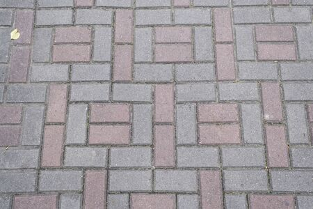 Gray - pink paving slabs with yellow lime leaf on it Stockfoto