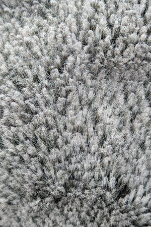 Abstract gray texture. Gray forest or wool-like background.