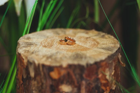 wedding rings on the stump in a green grass Stock Photo