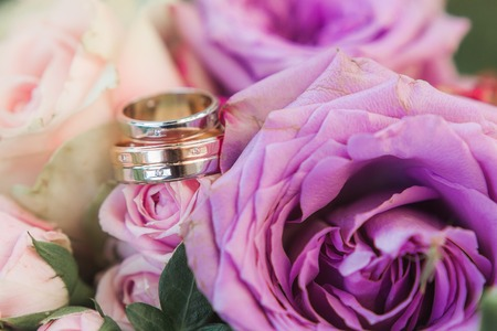 wedding golden rings on flowers close-up shot