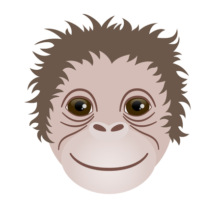 mischief: The head of a monkey on a white background. Illustration