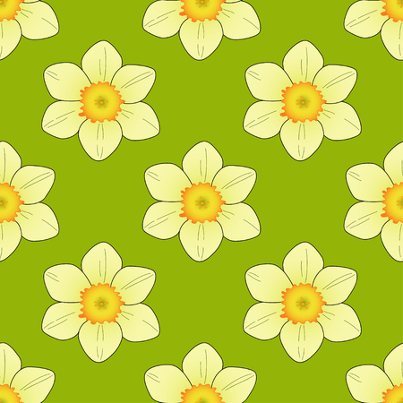 felicitation: Narcissus flower on a green background.