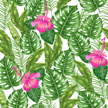 Patrón sin fisuras con la imagen de hojas tropicales. Adorno floral. Vector. Ilustración de vector