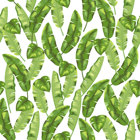 Green banana herb on white background. Seamless pattern. Vector.