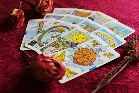 Tarot cards, dried rose buds and sprig of wormwood on bordeaux velvet background 免版税图像