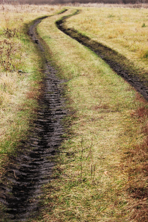 Country road through the field