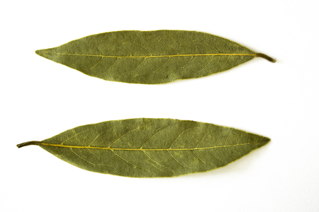 Two dried leaves isolated on white background