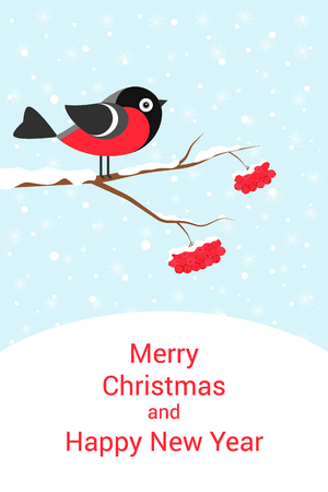 mountain ash: Christmas card with bullfinch on snow-covered branch of a mountain ash.
