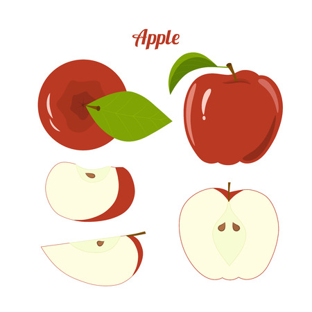 package design: Vector juicy red apple and apple slices for package design and labels. Design elements. Fruit.