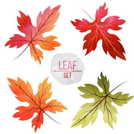 Set di foglie in colori autunnali con texture acquerello isolato su sfondo bianco Archivio Fotografico