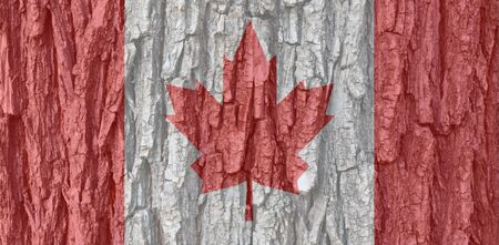 Canada flag on bark texture background. Background for greeting cards for public holidays in Canada. Day of Remembrance and Reconciliation. Labor day Victoria Day World Refugee Day.