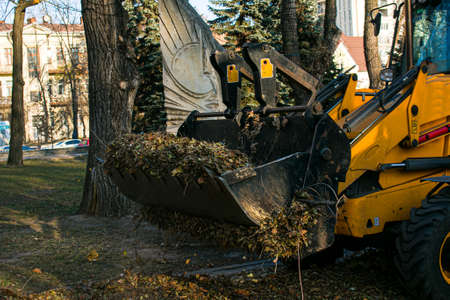 The municipal service is carrying out autumn works in the park. Cleaning fallen autumn leaves with an excavator and a truck in the city.