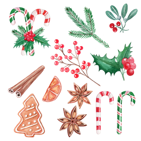 Set of Christmas elements, red berries, holly, cinnamon, mistletoe, ginger cookie, hand drawn illustration, watercolor 写真素材