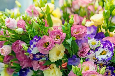 A large bouquet of multi-colored alstroemerias in the flower shop are sold in the form of a gift box. The farmers market. Close up. The horizontal frame.