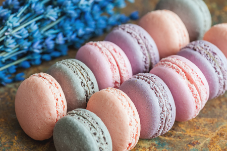 Freshly baked multi-colored berry macaroons close-up with lavender flowers, selective focus.