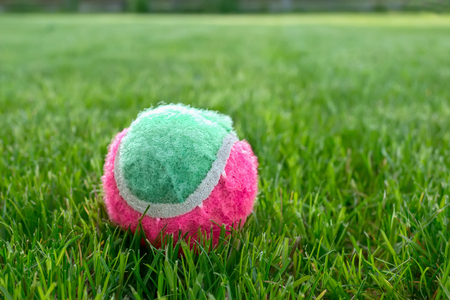 Tennis ball on the green lawn on a Sunny day Stock Photo