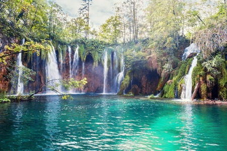 Several waterfalls of one of the most astonishing Plitvice Lakes, Croatia. A truly virgin and wonderful piece of nature. Banco de Imagens
