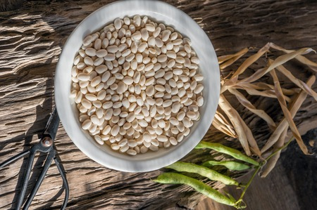 Dry grains of white beans lie on a wooden table in a white plate. Vegan food, animal protein substitute.