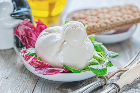 Burato cheese and lettuce for weight correction of Lollo Rosso lettuce leaves, watercress salad and other green herbs. Stock Photo