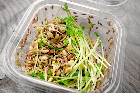 Salad of germinated seeds of flax pea lentils and other grains. Macrobiotic food concept. Stok Fotoğraf