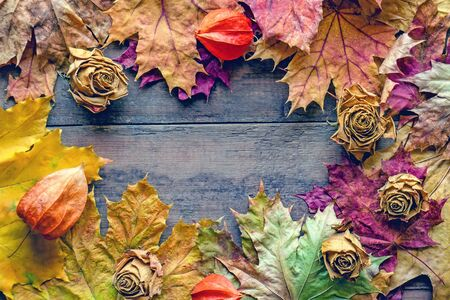 Frame of dry autumn leaves and roses on a wooden aged background . Copy space. Autumn color, autumn mood.
