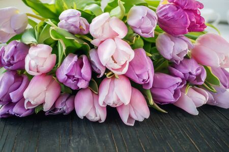 A beautiful bouquet of purple and pink tulips lies on a black wooden background. Copy space. Congratulation. Spring postcard. Stock Photo