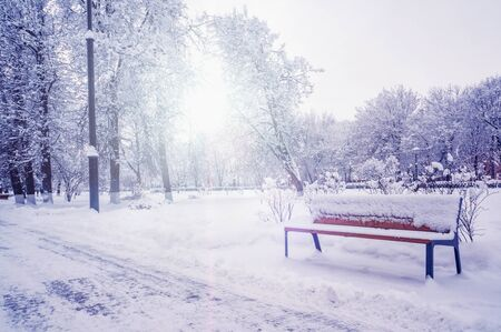 Garden bench in the Park in the winter snowfall. Seasonal phenomenon. Winter snow background.