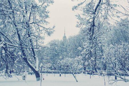 City Park in winter during snowfall. Seasonal phenomenon. Winter snow background .