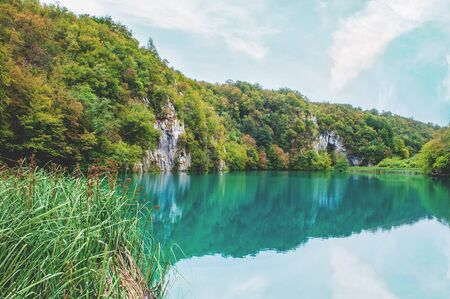 Surprisingly clear and clean Plitvice lakes of Croatia. A truly pristine and wonderful piece of wildlife in the mountains. A famous attraction in Croatia.