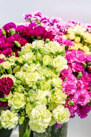 Huge bouquets of fresh colored carnations of green, pink, white, and red. Background of carnation flowers. Selective focus.
