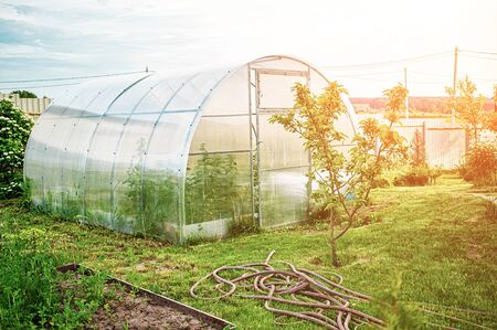 A polycarbonate greenhouse on a dacha plot on a Sunny day in spring. Archivio Fotografico