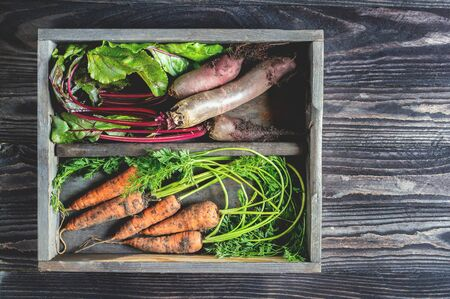 fresh beets and carrots are stored in a wooden box on the table. Close up. top view. Copy space
