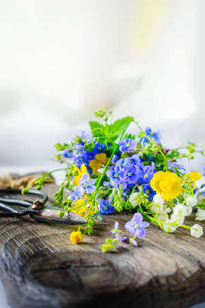 Composition with yellow Buttercup and forget-me-not on a wooden background. large rustic vintage scissors, a bouquet of wild flowers in a very old dark wooden box. real scene in the garden. natural light. Copy space