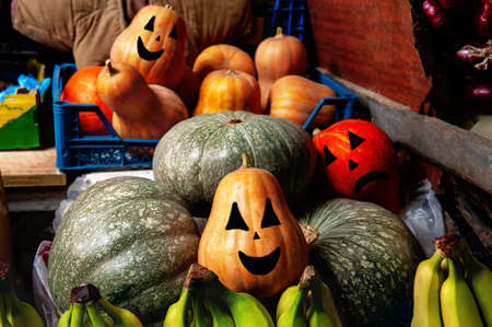 Fresh pumpkins for Halloween of various varieties on the market counter Archivio Fotografico
