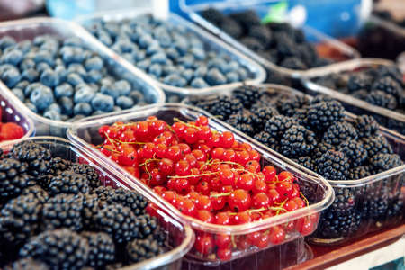 Blueberries, strawberries, raspberries and blackberries are prepared for sale at the farmers  market. Fruits on the market counter are laid out in plastic containers. Fresh farm products.