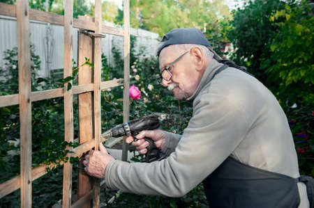 happy old man repairs a wooden pergola for a climbing rose with an electric drill. Old farmer with a drill