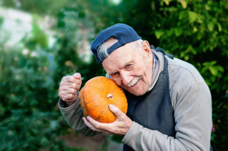 head gardener checks the ripeness of the pumpkin. The 87 - year-old farmer enjoys the pumpkin harvest in the garden. Cheerful active old man by nature Archivio Fotografico