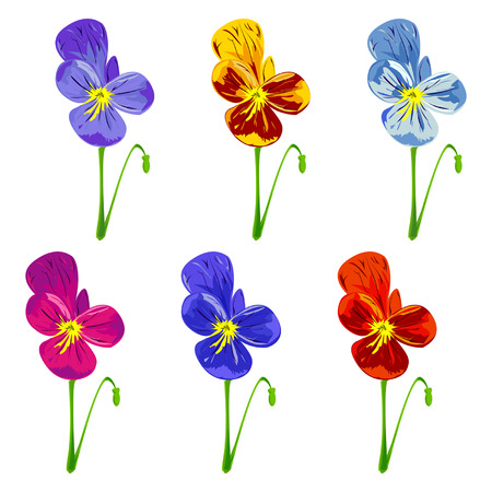 Set of different colored pansies.