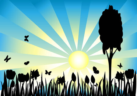 Grass and flower silhouette on meadow