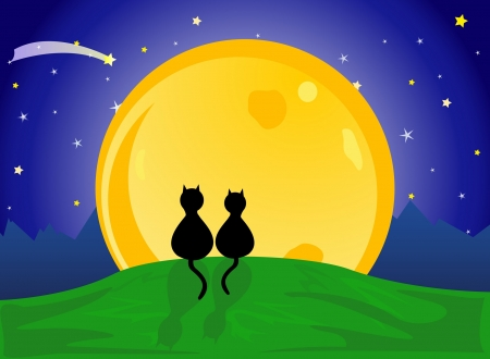 Two cats in love, watching  the moon