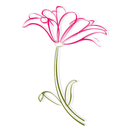 Painting isolated pink flower