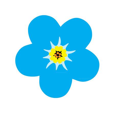 forget me not: Forget me not flower blossom. Blue flower. Vector illustration