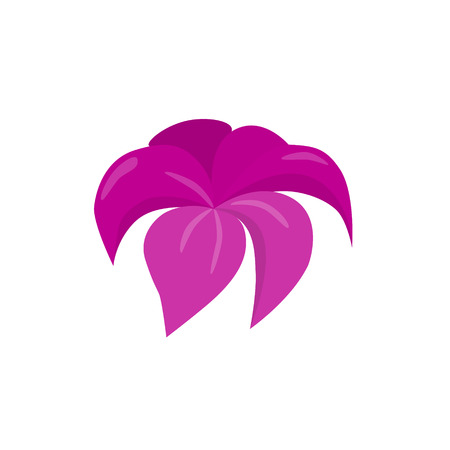 water lilly: pink blossom flower beautiful vector illustration Illustration