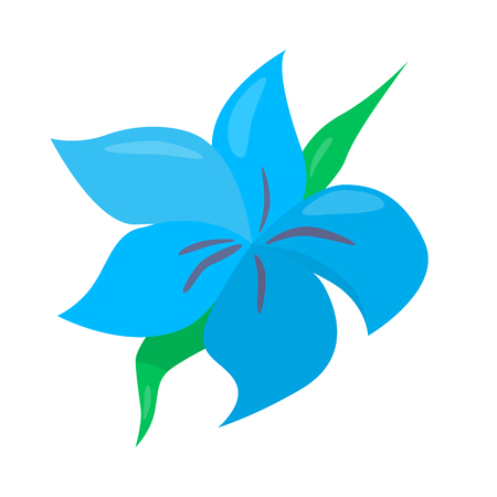water lilly: blue blossom flower beautiful vector illustration